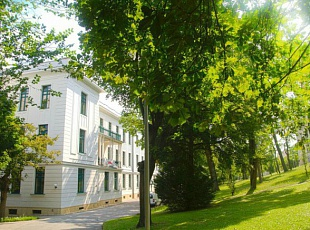 Изображение AMADEUS International School Vienna